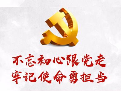 """残联各党支部开展 """"守初心担使命""""主题党日活动"""